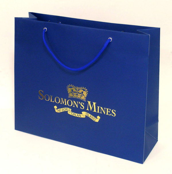 Custom printed shopping paper bags factory